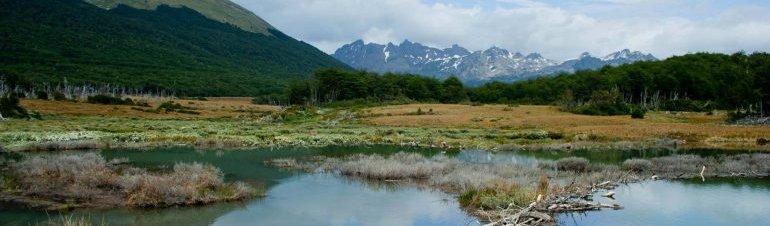 El fin del mundo te espera Ski, nieve y aventura en Ushuaia, Río Grande, Tolhuin, Cerro Castor