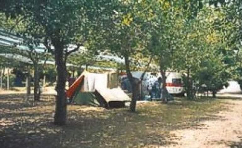 Camping Mar Y Sol - Mar de ajo / Buenos aires