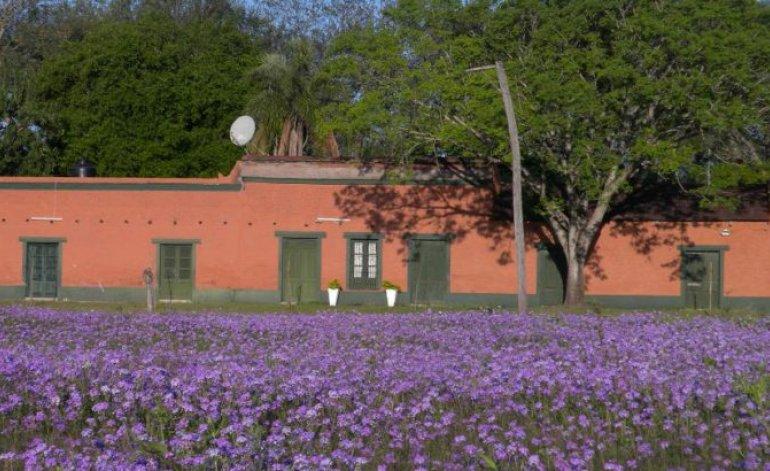 Estancia Hotel De Campo Dona Lola - Colonia benitez / Chaco