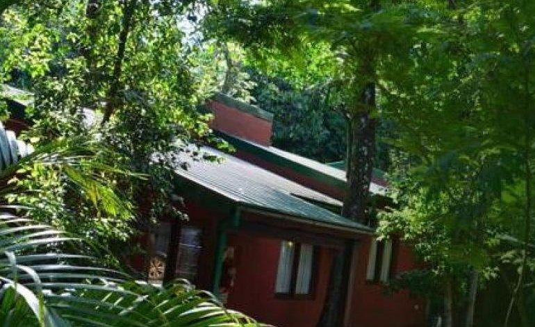 Alojamiento rural luces de la selva
