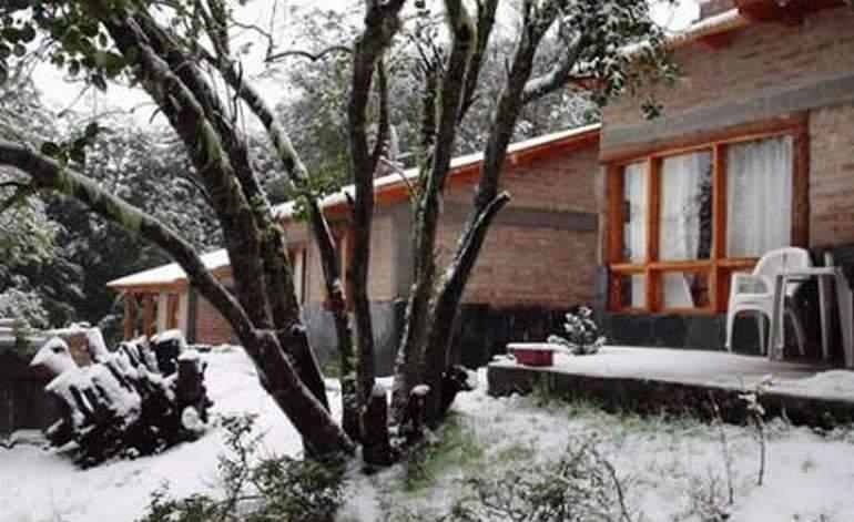 Cabañas Culle Lafquen - Villa pehuenia / Neuquen