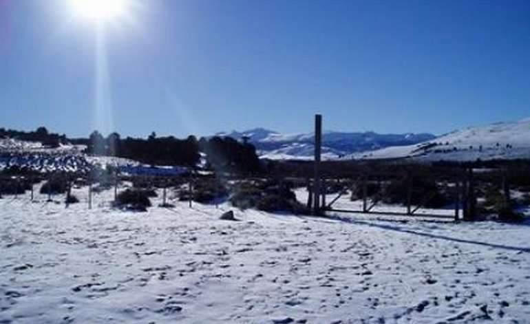 Hosteria Hostería Parque De Nieve Primeros Pinos - Primeros pinos / Neuquen
