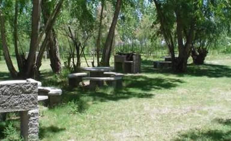 Camping Terrazas De Capiz - Campings / Mendoza